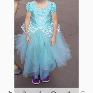 Other - Cinderella princess dress
